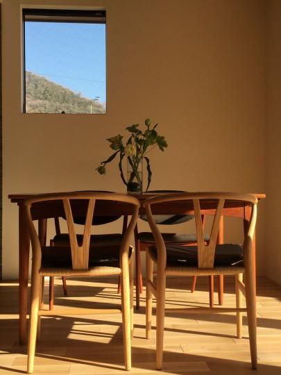 夕暮れの日差しが温かい色を家に与え、 日中とは全く違った表情になっています。